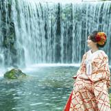 自然そのものの演出となる雄大な大滝