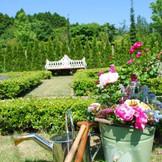ガーデンには沢山のバラが咲き誇ります