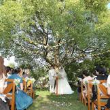 シンボルツリーに見守られて行う人前式