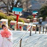 関東平野が一望できるほど高台にある神社は、天気が良ければ富士山が見える人気のスポット
