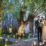 キャンドルや照明が幻想的に映えるトワイライトウェディングが大好評。夕刻から夜のパーティでは、ガーデンにキャンドルを灯したり、会場内のシャンデリアで日中とは違う表情を映したり、ロマンチックな風景が広がります。