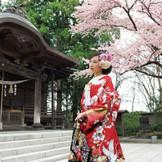 【彌高神社】四季折々の景色の中で厳粛な挙式を執り行うことができる