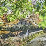 白川や東山三十六峰など自然豊かな場所が点在。 白川は夏に蛍が飛ぶほどの清流で地域に愛されている憩いの場所 欅や桜など季節を感じることができる風光明媚な景観は六絲水までの道中も楽しくさせてくれる。 最寄り駅より徒歩5分圏内の立地はゲストにも嬉しい
