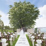 シンボルツリーを前に永遠の誓いを