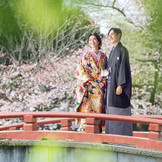 鶴岡八幡宮は日本三大八幡宮の一つであり、鎌倉幕府の初代将軍である源頼朝ゆかりの神社として、また鎌倉のシンボルとして愛されています。豊かな自然に満ちた境内は、社の深い緑や春の桜、秋の紅葉と、季節ごとに美しく表情を変え、鮮やかに彩ります。