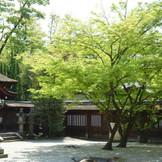 豊国神社風景