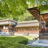 日本庭園を眺める場所で