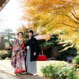 日本庭園では優美で贅沢な時間を。