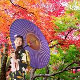 四季折々の景色を彩る鶴岡八幡宮挙式