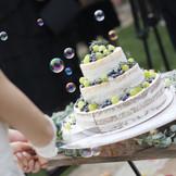 切株を使ったネイキッドケーキも人気