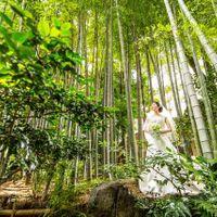 日本庭園×ウェディングドレス。純白のドレスも映えます。