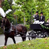 挙式後 新郎新婦はご親族やご友人からの祝福の拍手のなか馬車へ