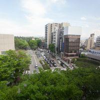 広坂大通りから兼六園の樹木まで、緑豊かな景色が見えます