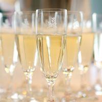 乾杯スパークリングワインも人気です!