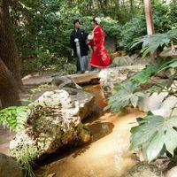 生田の森でお散歩