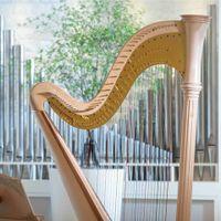 教会内には聖歌隊の歌声と生演奏の美しい音色が響き渡る