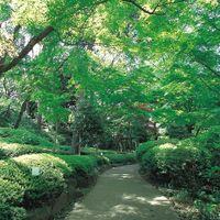 1800坪の日本庭園