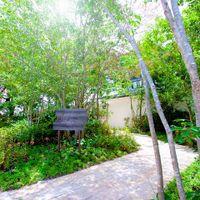 森の小径を抜けた先に、メゾン・ド・フォレストの貸切邸宅が現れる。プライベート空間で特別な一日を。
