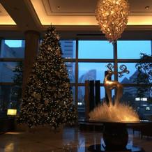 ロビーにクリスマスツリー