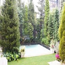 プールと庭は思いの外古くて小さい