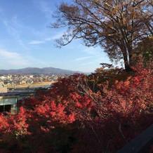 前撮りのときの紅葉がとっても素敵でした!