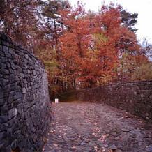 石の教会への道