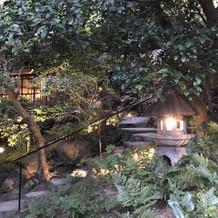 中庭です。広くて雰囲気があって綺麗!