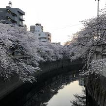 庭園から出たところの神田川の雰囲気