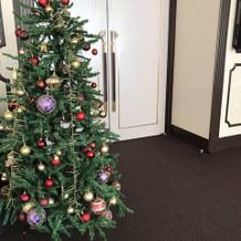ロビーに大きなクリスマスツリー