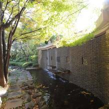 奥には小川も流れています。