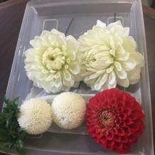 綺麗なお花を選んでもらいました。
