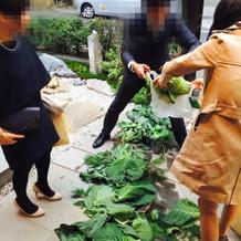 帰り際にお野菜のお裾分け。笑