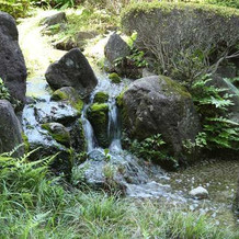 庭園の奥から滝が流れてて綺麗でした