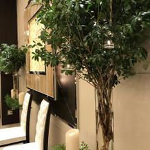 とてもおしゃれな木とキャンドルの装飾