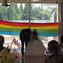 入場は虹の演出をしました
