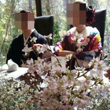 テーブルに桜の花を。