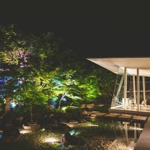 夜のライトアップのお庭の写真