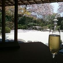庭園を見ながらの食事が素敵でした