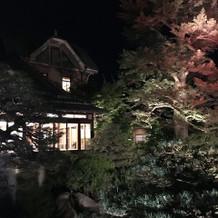 昼も夜も庭園が綺麗です。