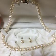 持ち込みの真珠