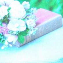 美と可愛らしさと聡明を表現する小物