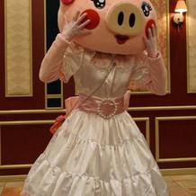 豚のももちゃん(笑)