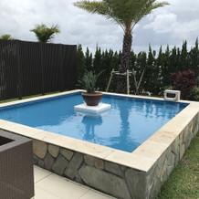 庭には綺麗なプール。