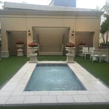 庭のプールでフラワーシャワーができる