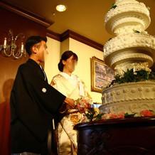ハッピープラン:イミテーションケーキ