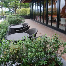 ホルト専用の庭