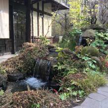 趣のある玄関前のお庭です