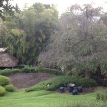 庭は散策できるようになっている