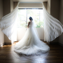 スカート部分にも刺繍の入った王道ドレス