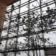 披露宴会場の大きなガラス窓